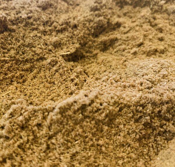 shemins coriander powder